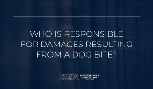 Who is liable for damages resulting from a dog bite?